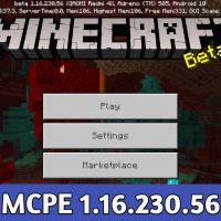 Minecraft PE 1.16.230.56